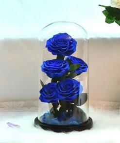Lot De Rose Éternelle